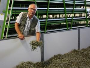 Der frische Tee trocknet nach der Ernte in einer großen Wanne. Der technische Vorstand Joachim Günther prüft das Ergebnis. Foto: Zänker