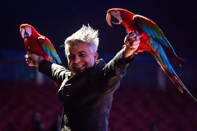 Antony Zatta mit seinen  Papageien.