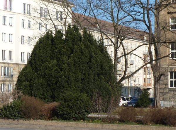 Schulcampus eiben 0311