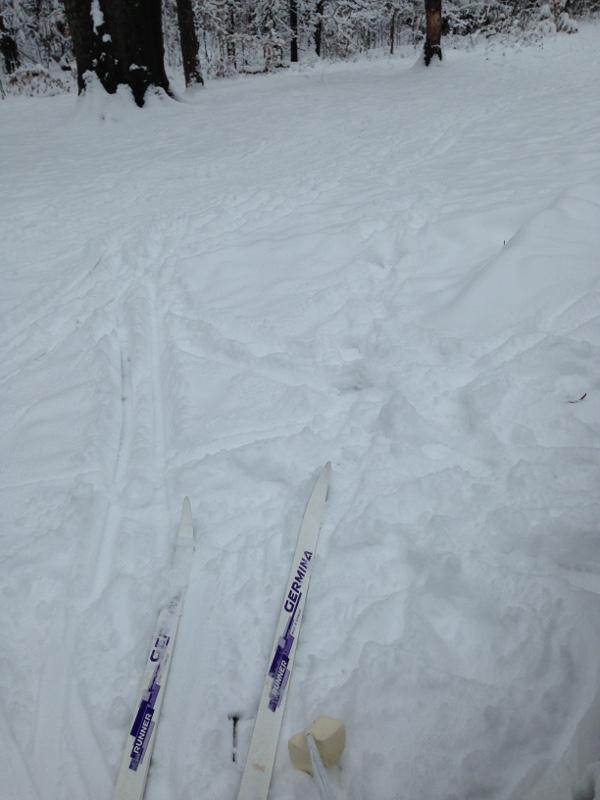 skilaufen heide ski